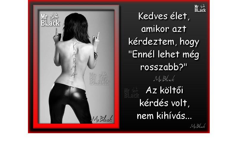2239. Kedves élet | Mr. Black